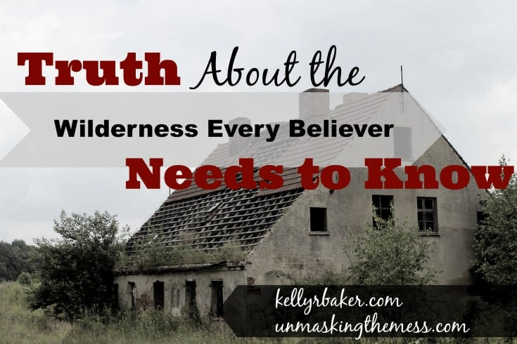 Truth About the Wilderness Every Believer Needs to Know. Best Strategies for battle can be seen from Jesus.