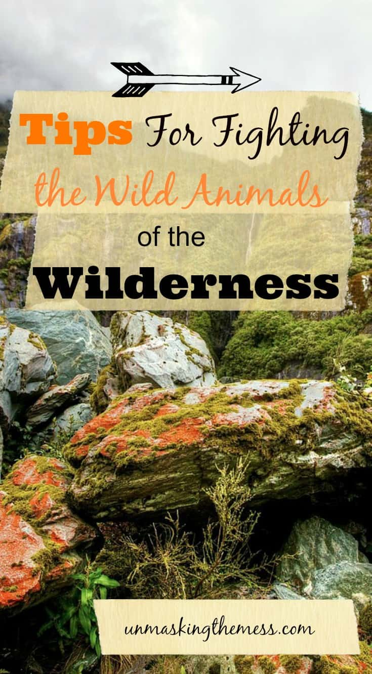 Tips For Fighting the Wild Animals of the Wilderness. How does the Bible help us overcome the wild and evil of the Wilderness?
