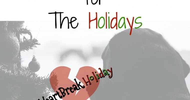 Tears for The Holidays #HeartBreakHoliday. Tears of sadness and crying from loss. Coping and dealing with loss, grief and death of a loved one. Finding comfort with God's love, Scripture and Bible verses.