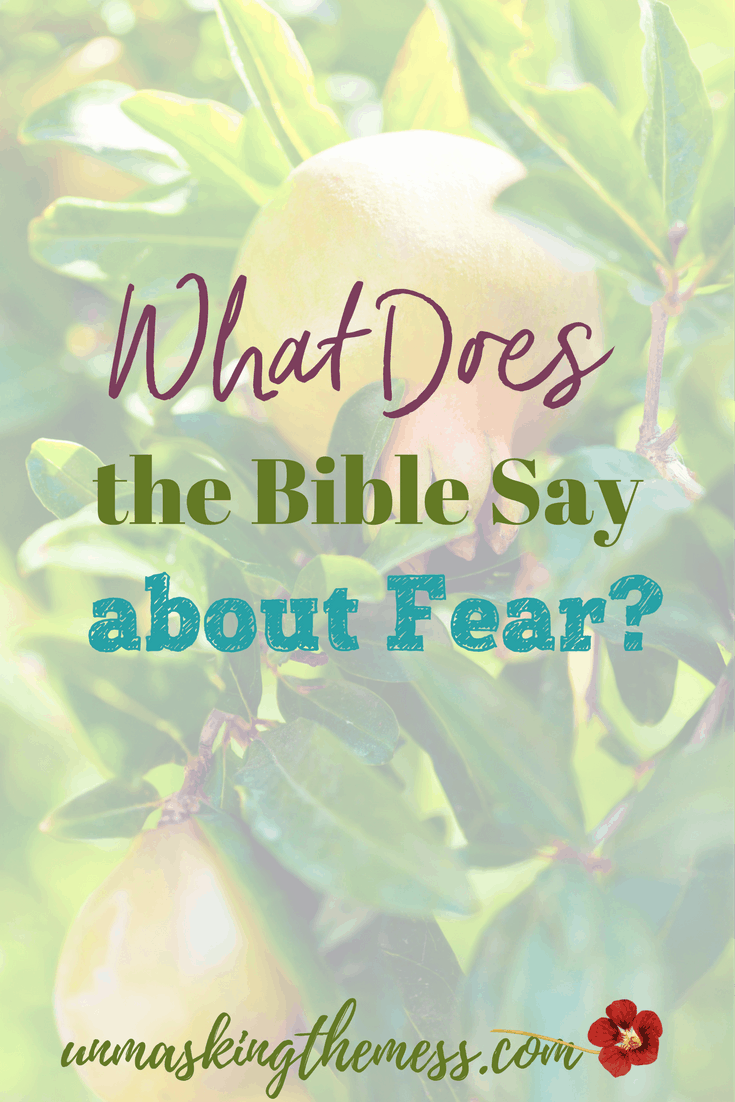 What Does the Bible Say about Fear? Are you fearful and tense? How do we live in this scary world without letting these emotions overwhelm?