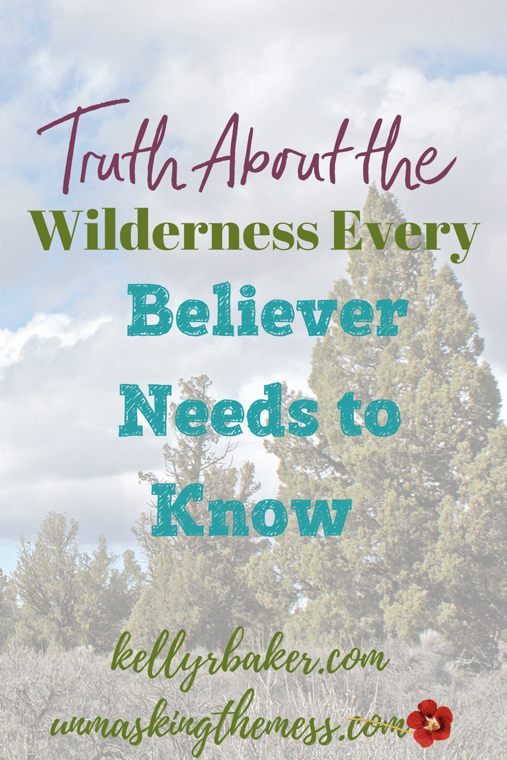 Truth About the Wilderness Every Believer Needs to Know. Maybe God has allowed this time so I can learn His ways? Perhaps this dry season is preceding a new phase of my calling? My faith and trust are in God alone. #faith #wilderness #trust